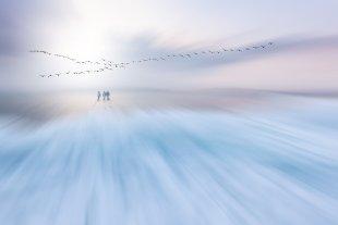 Winterspaziergang von Uschi Hermann
