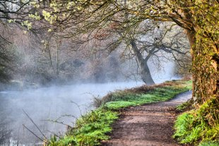 Nebel am Fluss von Reinhard01