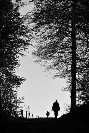 Frühlingspaziergang von AndreasvomLand