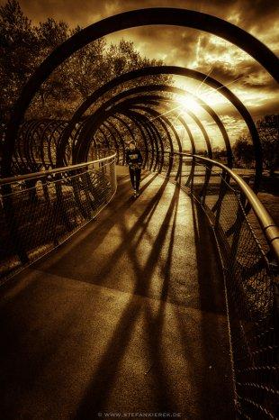 Slinky Springs to Fame.... von Radonart