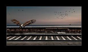 Rails to the past von Carsten Fendler