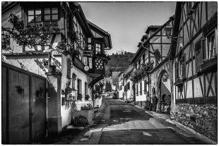 Winzerhöfe in der Pfalz von Bernd Seibel
