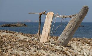 Die Strandharfe von fotofreund55