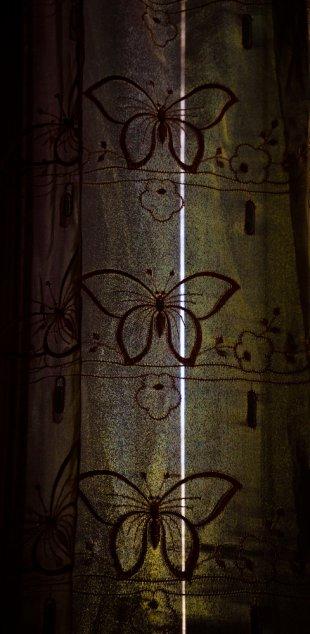 Im alten Pfarrhaus 11 von Bernd Unger