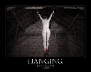 Hanging von vinculum