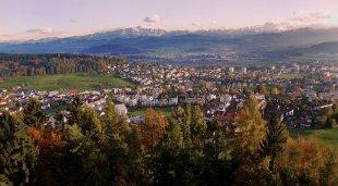 Baum-Stadt-Alpen Panorama von Alberts-Fotografie