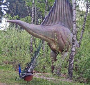 Pfau und Dino von vicia-faba