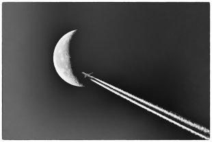 Fly by von Pham Nuwem