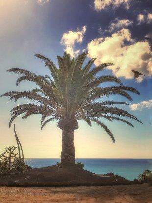 Caribic dreams von Frenchi81