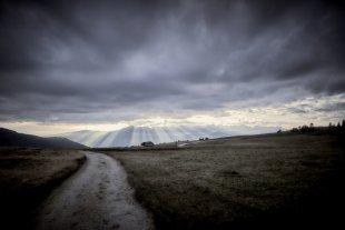 der Weg... von Texas Longhorn