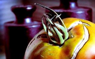 Semi-Green Tomato von DLC-4775
