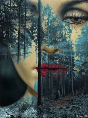 The secret face in the forest von Gabi Hampe