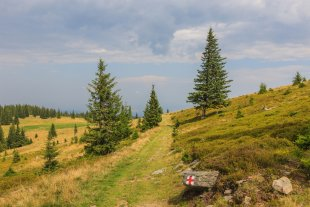 Wanderweg von Fleck_P