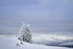 Der Winter ist da...2 von Texas Longhorn