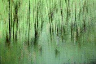 still ruht der See von Labilla