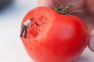 Miniaturwelt - Tomate zerkleinern von Ditmar Kerkhoff