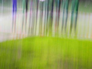 abstract von baumfrosch