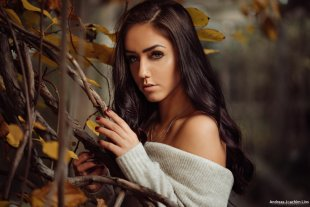 Fall is Here von Andreas-Joachim Lins