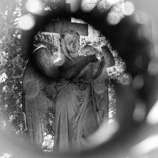Friedhof Bergmannstraße 1 von DiSe.fotografie
