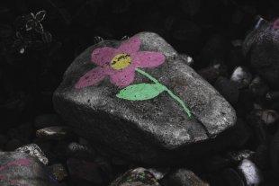 Stoneflower von tlufotos