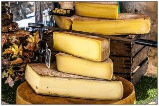 Alles Käse  . . . . . von Bernd Seibel