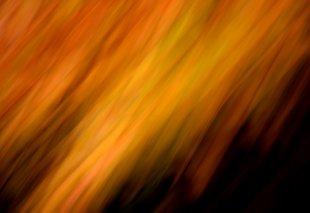 flammender Herbst von Labilla