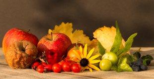Stillleben Herbst von Trevis_de