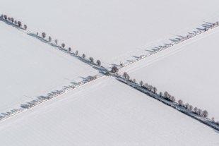 Kreuzung von Joachim Kopatzki
