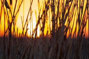 Nur ein Sonnenuntergang von friejek