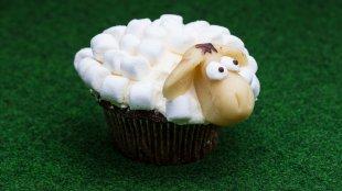325/365 - Leckeres Schaf von micha0001a