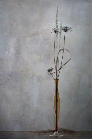 Wintergräser von Rolf Fries