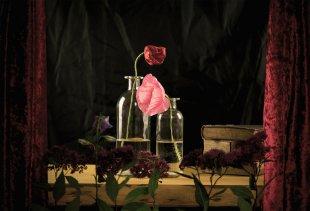 Romeo & Juliet von Christian_Schulz