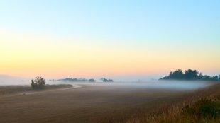 Morgenlandschaft im Nebel von papua1