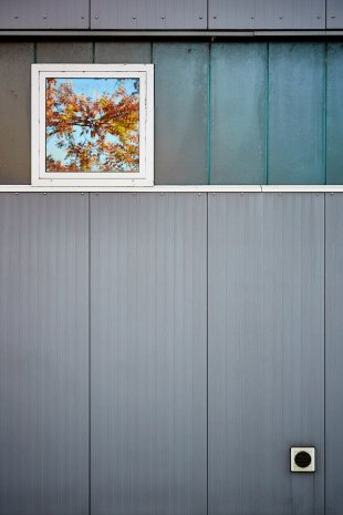 Herbstfenster von Tom Icke