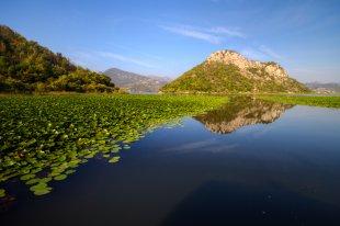 Neulich am See von Pham Nuwem