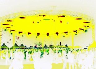 UFO landing von capreomontanus