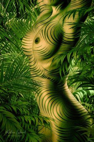 chameleon jungle nude art (rainforest - wildlife - bodypainting zebra - urwald) von Kristian Liebrand