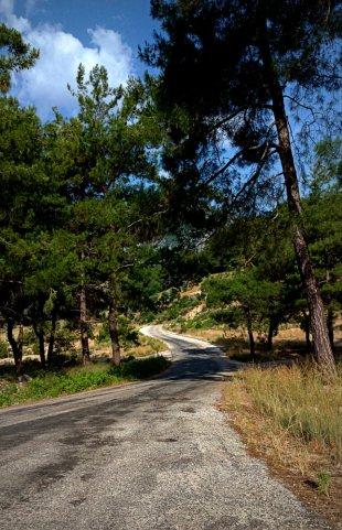Der Weg ... von Mira1959