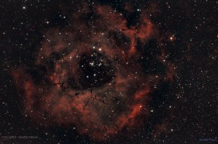 Rosettennebel NGC 2237 von legroeder