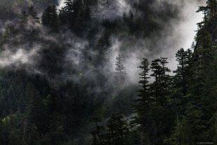 Regen in den North Cascades von lewski
