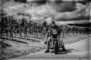 Harley von belapho