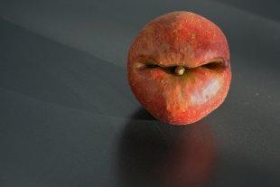 Der Apfel ist sauer von Erika Rutert