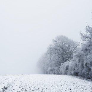 Winterhauch I von 54gradpixel