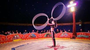 Circus von docolli