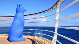 Blauer Hüter der Weltmeere von achimbitzer