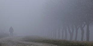 verloren im Nebel von Martin Heinrichmeyer