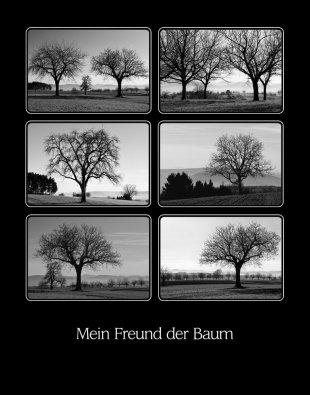 Mein Freund der Baum.jpg von Didjeh