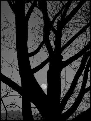 La Lune von Lightproof