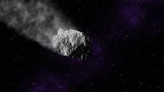 Studie: Asteroiden-Crash steigerte Artenvielfalt auf der Erde