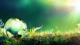 Wissenschaftler kritisieren Europäischen Green Deal: Zu vage, zu unverbindlich